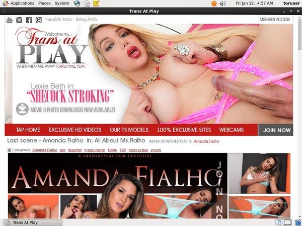 Transatplay.com Full Free