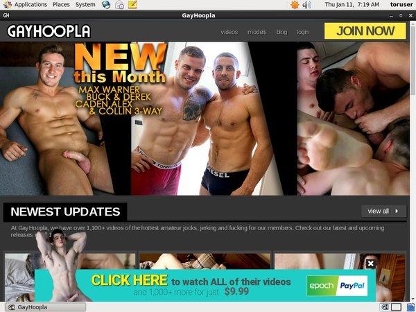 Gay Hoopla Paiement
