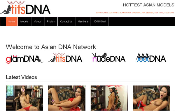 Tits DNA Discounted Offer