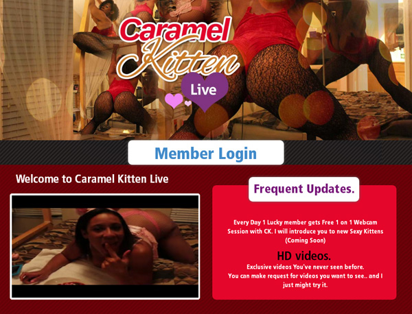 Caramel Kitten Live Free Accounts